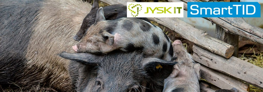 Jysk-IT og SmartTID